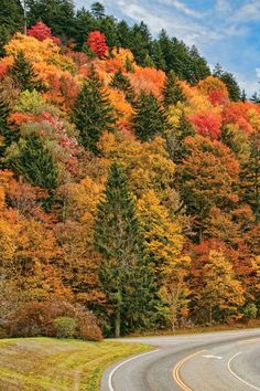 Travel | Tennessee | USA | Fall Foliage | Scenic Drives | Country Roads | Nature | Autumn