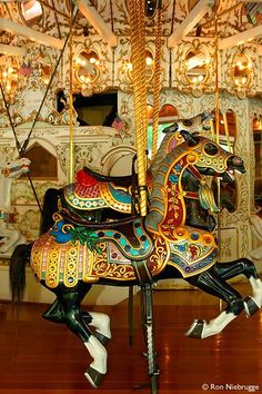 The 1909 hand carved Looff Carrousel at Riverfront Park, Spokane, Washington. Carrousel, Pretty Horses, Beautiful Horses, Carosel Horse, Amusement Park Rides, Wooden Horse, Painted Pony, Merry Go Round, Horse Art
