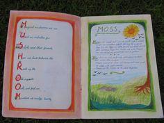 Class 5 Plant study ML Book Cape Town