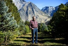 Donald Beck stands for a portrait at Beck's Tree Farm in Alpine on Monday, Nov. 14, 2011. Beck's Tree Farm has been in business for almost half a century. JAMES ROH/Daily Herald