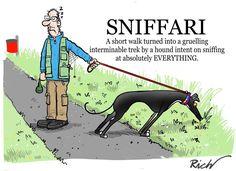 We call these walks sniffalongs!