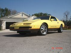 1992 Jamaica Yellow Formulas  Firebird  Pinterest  Firebird