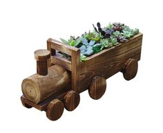 Interesting combination of personalized cartoon train more meat pots wood preservative plant flower pots
