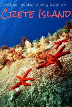The Best Scuba-Diving Spot on Crete Island http://www.lindagoeseast.com/2016/08/03/best-scuba-diving-spot-on-crete-island/