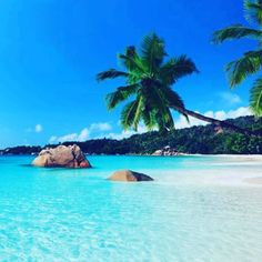 Vacation Places, Vacation Destinations, Dream Vacations, Places To Travel, Africa Destinations, Dream Vacation Spots, Mini Vacation, Romantic Destinations, Vacation Ideas