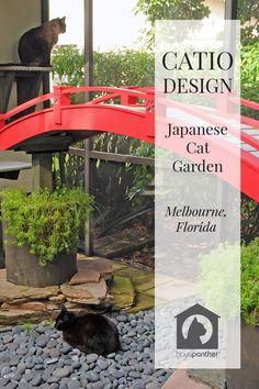 Japanese-inspired Custom Catio Design in Florida Japanese Tea House, Japanese Cat, Benny And Joon, Diy Cat Tent, Large Ceramic Planters, Cat Climber, Cat Garden, Balcony Garden, Under Decks