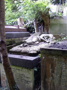 beauty in cemeteries