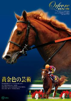 Racehorse, Advertising Poster, Thoroughbred, Horse Racing, Hero, Japanese, Horses, Stay Gold, Animals