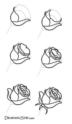 +real sketched drawings | Let's work on rose petals. My best advice is to begin creating petal • ....reépinglé par Maurie Daboux ❥•*`*•❥...