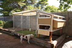 Otro Diseño, Encanto de pollo hecha en casa Ideas Coop con alambre Jaula Para Backyard Planes Decoración Vistas: Assorted Chicken Coop Ideas Diseño Creativo Y Imágenes