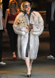 Lady Gaga steps out in Bulgaria wearing a large fur coat and carrying a small dog