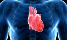 How our heart rate predicts the likelihood of an early death