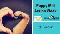 puppy mill action week