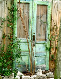 Green Cottage Doors Fine Art Photography Old by StudioSwede13, $28.00