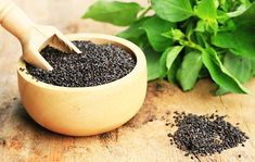 5 Health Benefits of Basil Seeds and How You Can Use Them - Fat Lose Diet Matcha Cafe, Basil Health Benefits, Benefits Of Berries, Sprouting Seeds, Rich In Protein, Grow Organic, Food Trends, Summer Drinks, Kraut