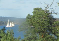Sailing (photo taken trough my window)