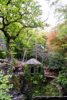 hermitage tollymore forest