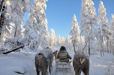 Oymyakon. The Pole of Cold is located not far from Kolyma Highway. The road starts off from Yakutsk and heads off up to Magadan and surmounts three major mountain ranges, which in combination with other climatic factors create the unique climate of the area.