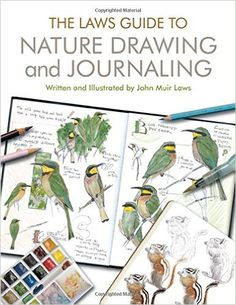 The Laws Guide to Nature Drawing and Journaling  by John Muir Laws is a don't-miss-it book for your studio       I am so delighted to have ...