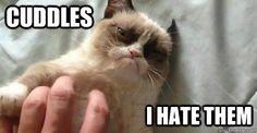 cuddles...i hate them.