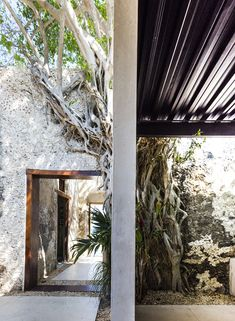 Gallery of Material Focus: Hacienda Niop by AS Arquitectua and R79 - 5