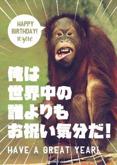 お誕生日の本人よりお祝い気分な友達にはこれ Birthday Photos, Birthday Cards, Happy Birthday Animals, Message Card, Cute Wallpapers, Messages, Humor, Random, Funny