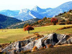 Contrasting landscapes