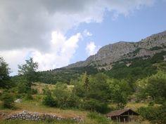 Body Awareness Therapy – Kropsbaseret mindfulness i det smukke Toscana | 16. - 23. august 2014 - Munonne