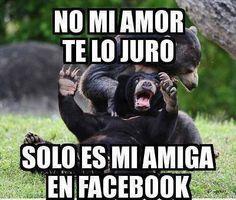 Amiga en facebook