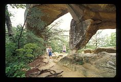 Red River Gorge, KY, I've been here:)