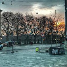 Med sådan en solopgang bag træer er det ikke så slemt at skulle afsted med bus til fys kl 0800. #rygsaga #nørreport #copenhagen #delditkbh #solopgang #kongenshave #rosenborgkaserne #rosenborg #deldinby #kbhpol #cphlove