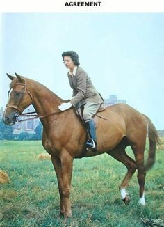 Queen Elizabeth and Doncaster ~ anyone know why people didn't use to ride with saddle pads?