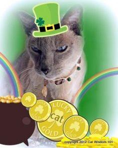 Irish Lucky Money Cat.