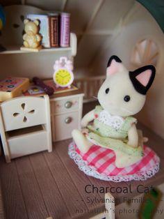 Klein katje in haar kamer.
