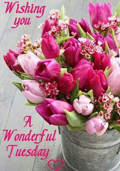 Happy Tuesday <3 No Pin Limits <3 My favorite 3 words! <3Jada<3