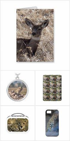 Wildlife Presents