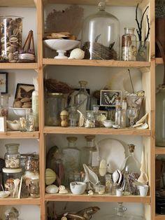 Shelves of treasures.