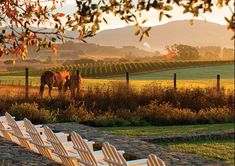 The Ultimate Wine Country Getaway, Carneros Inn, California