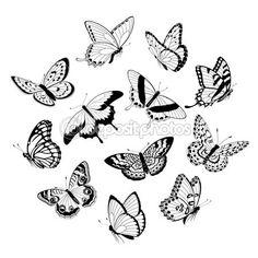 Flying black & white butterflies — Stock Illustration #10914955