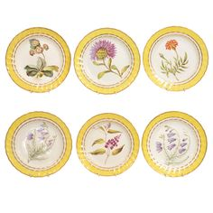 Early 19th Century Derby Porcelain Botanical Dishes - Yellow ground, fluted dessert dishes painted in the manner of John Brewer with named botanical specimens. The botanical designs are taken from flower specimens shown in Curtis's Botanical Magazine begun in 1787. Marks: script titles of each specimen some in English & others in Latin & English, crown, crossed batons & D mark & pattern no. 216 in blue to the underside of each piece. Circa 1800. H: 1.25 in. D: 8.85 in. - BARDITH, New York
