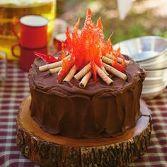 Camping birthday party ideas: Camp Way Over the Hill Celebrate his milestone birthday at Camp Way Over the Hill! Includes fun birthday party ideas, free printable invitations and decorations, recipes and campfire cake instructions. Food Cakes, Cupcake Cakes, Candy Cakes, Campfire Cake, Bonfire Cake, Campfire Cupcakes, Campfire Cookies, Camping Cakes, Camping Party Foods