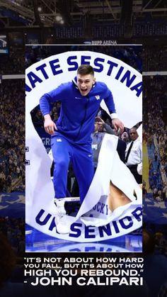 Kentucky Basketball, College Basketball, University Of Kentucky, Kentucky Wildcats, Go Big Blue, Rebounding, Silhouette, Baseball Cards, Kentucky University