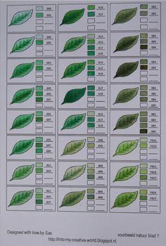 All sorts of leaf shapes. by freida