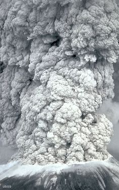 Mount St Helens, erupted on May It is an active volcano in Washington. When it erupted, volcanic ash covered the surrounding area and citizens needed masks because of all of the ash and debris. Natural Phenomena, Natural Disasters, Volcan Eruption, Volcanic Ash, Evergreen State, Wild Nature, Lava, Amazing Nature, Mother Earth