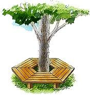 Encircle a tree with a wooden hexagonal bench.