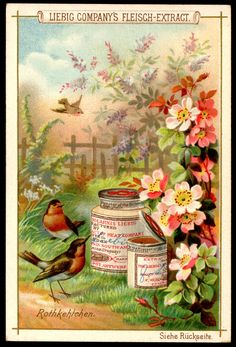 "Liebig's Beef Extract  ""Birds & Flowers"" German issue, 1892"