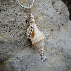 Seashell Silver Wire Wrapped and Beaded Pendant Necklace Seashell Silver Wire Wrapped and Beaded Pendant Necklace - Wire Jewelry Seashell Jewelry, Seashell Necklace, Seashell Crafts, Beach Jewelry, Sea Glass Jewelry, Ocean Jewelry, Silver Pendant Necklace, Pendant Earrings, Pearl Pendant