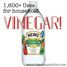 1,600+ uses for VINEGAR! Plus...how to use vinegar to treat sunburns. - Fun Cheap or Free