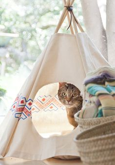 10 DIY pour les amoureux des chats : Un tipi diy  -  10 DIY for cat ladies (and dudes) a cat teepee tutorial @abeautifulmess / Marie Claire Idées