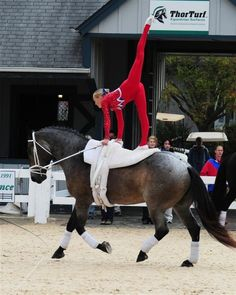 Red equestrian vaulting uniform with white dots and some blue